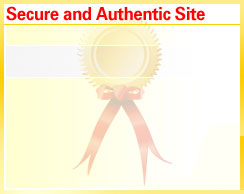 Computers South Africa - secure site